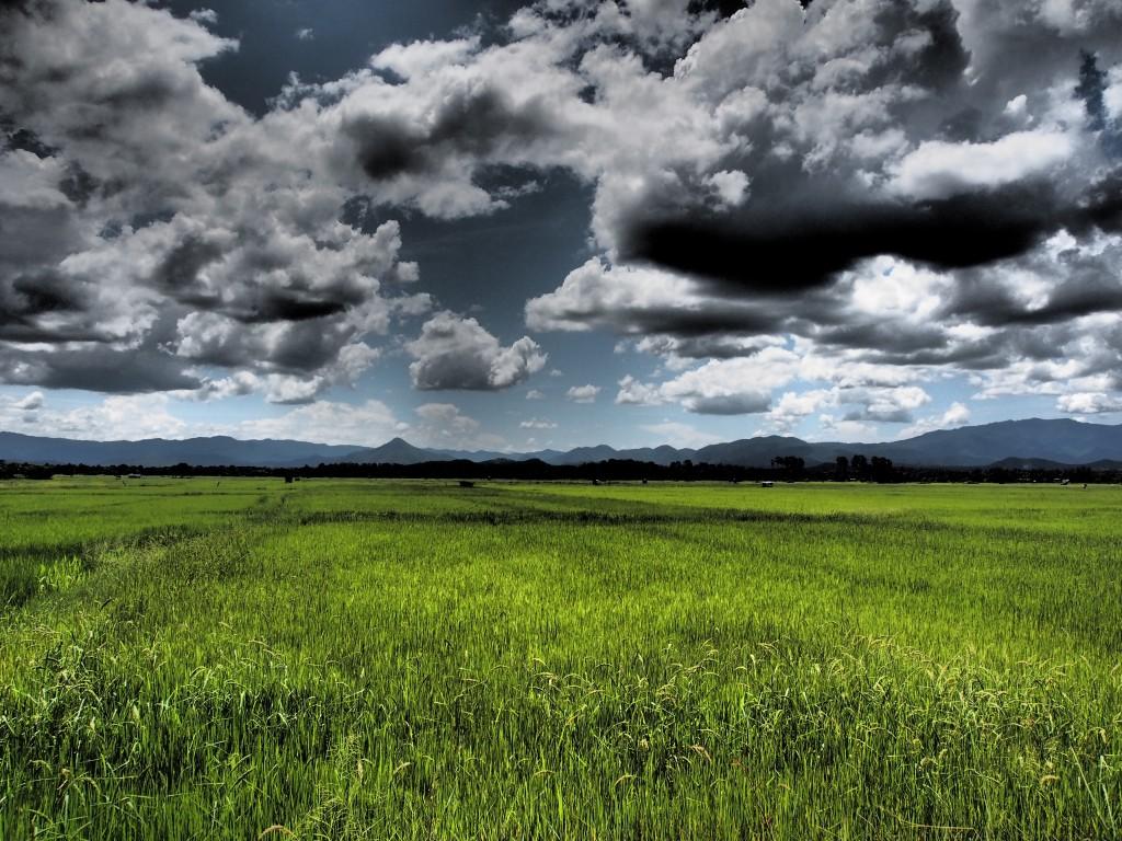 nuvole 1024x768 Nuvole
