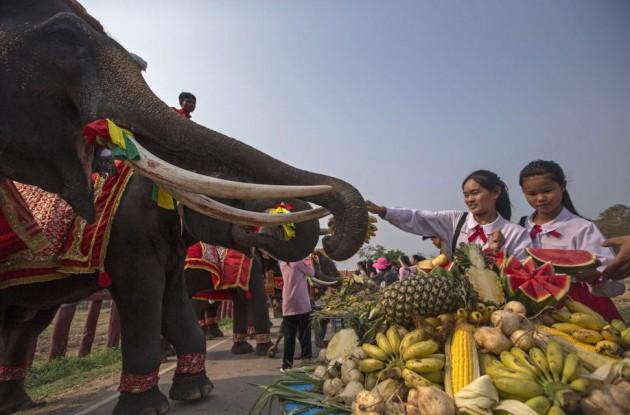Studenti danno da mangiare a un elefante ad Ayutthaya, in Thailandia. La scorsa settimana in tutto il paese si e' reso omaggio all'elefante, considerato l'animale simbolo della nazione