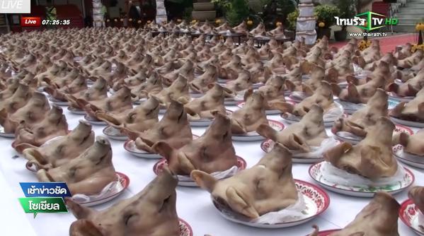 Teste di maiale Buddha