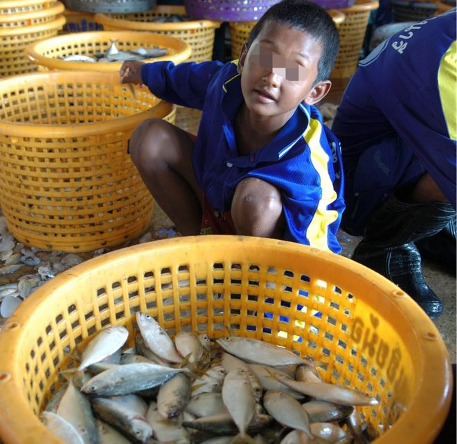 La maggior parte dei minori impiegati nel commercio ittico sono figli di pescatori da Myanmar e Cambogia