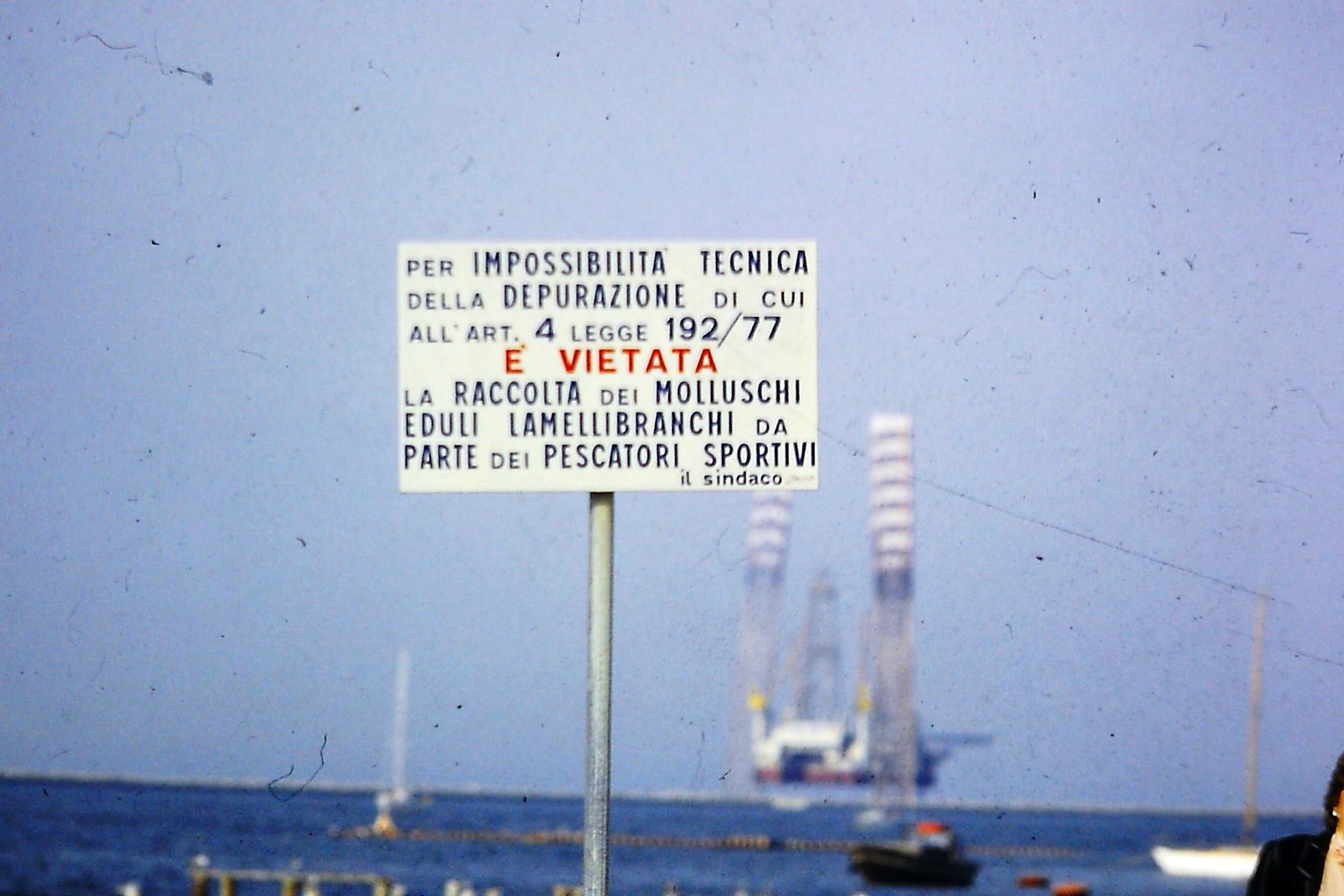 Marina di Ravenna - foto Luigi Trombini