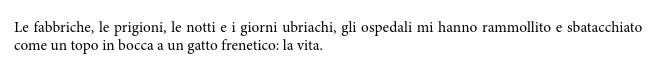 Charles Bukowski, stralcio di una lettera del 1965 scritta a Jim Roman -inedito, Sui gatti, Ed Bompiani